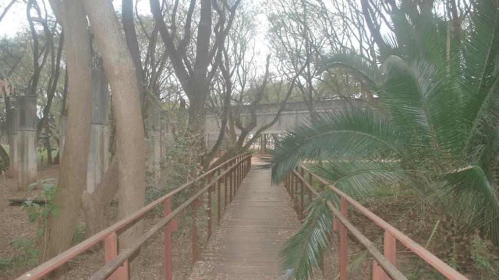 Parque da Juventude no bairro do Carandiru.