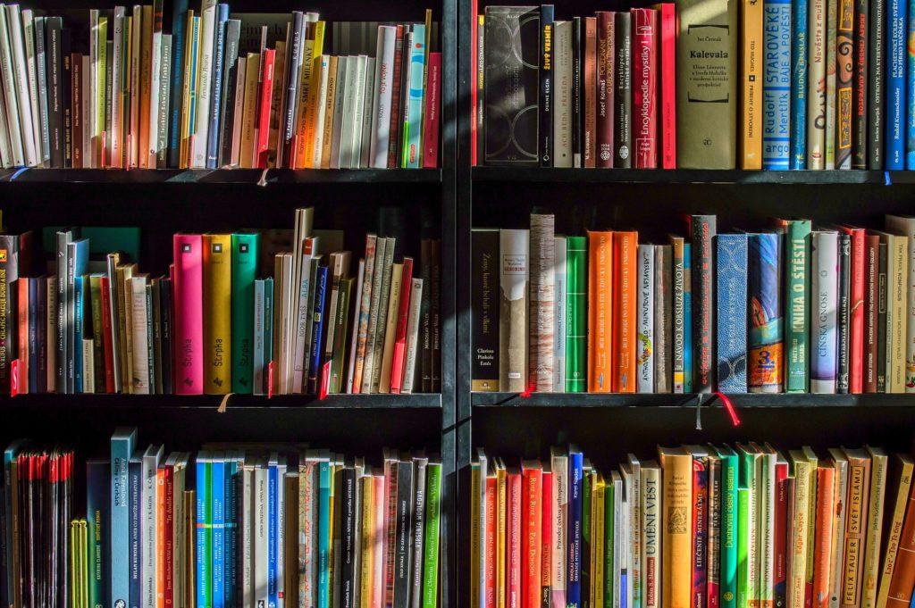 Leitura: entenda como a taxação dos livros pode ser uma barreira para a ampliação do hábito no Brasil